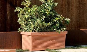 jardinera rectangular clsica de evo abflowers
