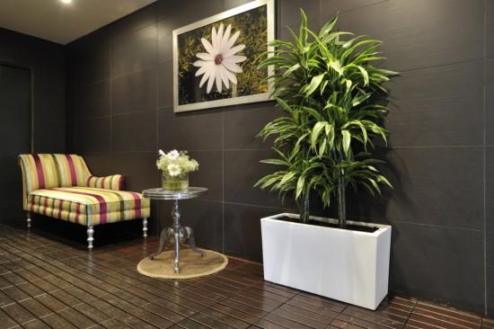 foto jardinera interior de ibiza house proyectos y