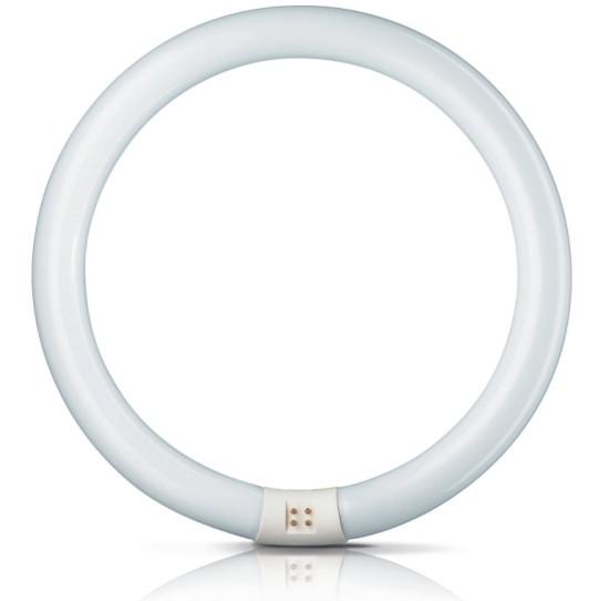 Fluorescentes circulares philips con luz d a fr a - Tubos fluorescentes circulares ...